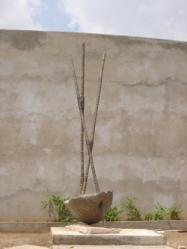 bamboo, 600cm, Inde