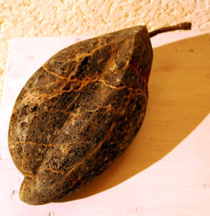 KarmaPhala 1, pierre de la Butte et bronze