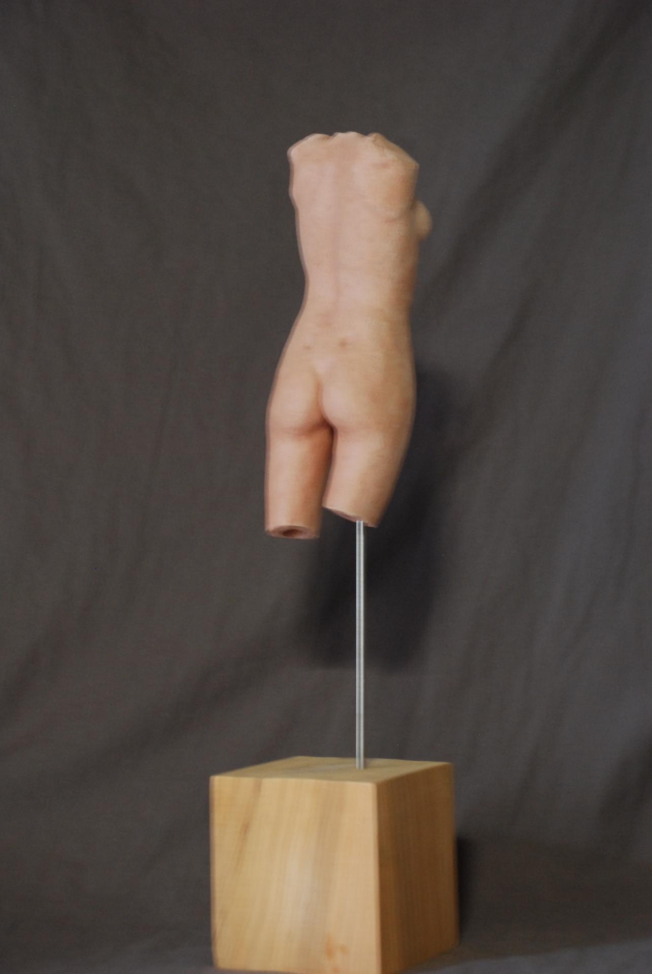 argile sur bois h: 50cm